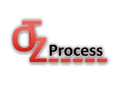 Otz Process